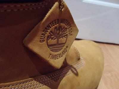 Timberland may partner Myntra in its comeback bid in India