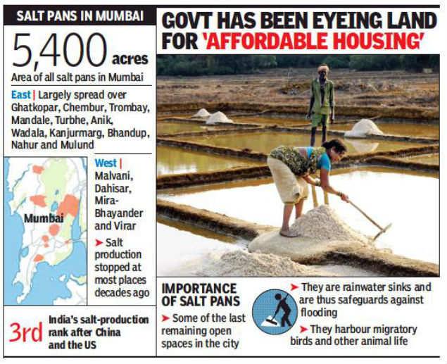 New survey could open up Mumbai's salt pan land for development