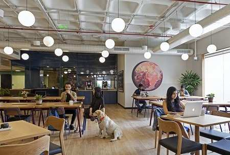 WeWork India: WeWork claims all its buildings have become