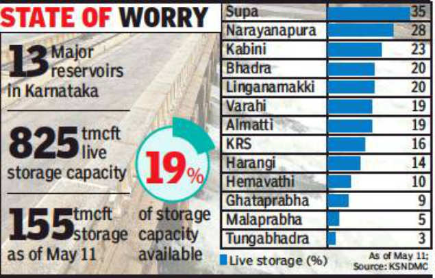 Water level in Karnataka's 13 major dams down to 19%
