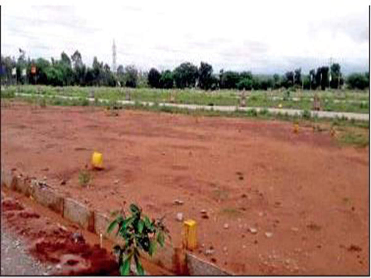 Noida: About 70% of smaller plots put on auction in November 2019 sold