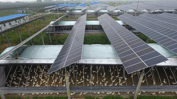 Droit de base proposé de 25% sur les modules solaires la première année: R K Singh
