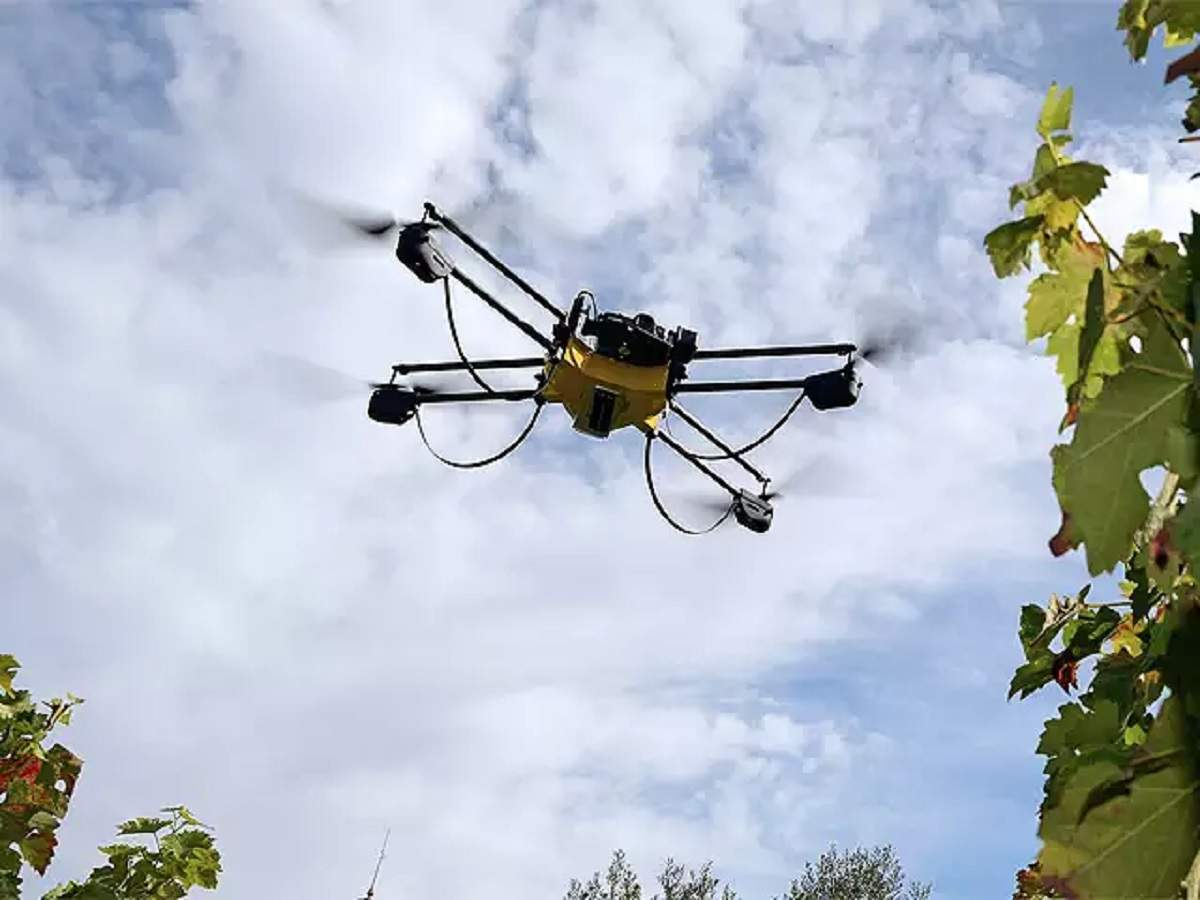 Agriculture ministry eyes drones to fight off locusts swarms