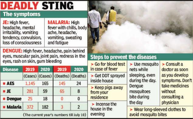Hygiene, Covid curbs help bring down dengue, encephalitis cases in Assam