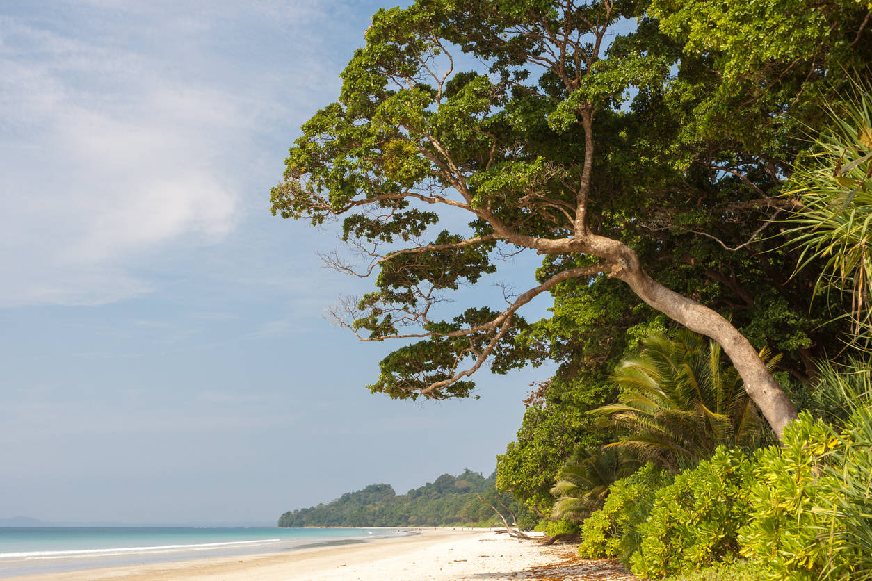 Eight Indian beaches vie for the Blue Flag certification