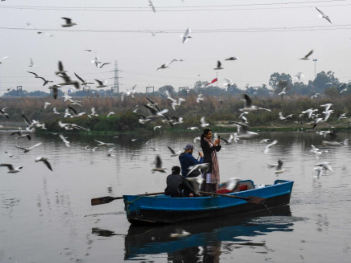 Rain, gusty winds bring pollution levels down in Delhi NCR