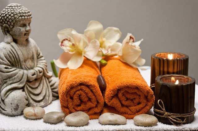 Wellness Tourism seeks urgent steps to save retreats from closure