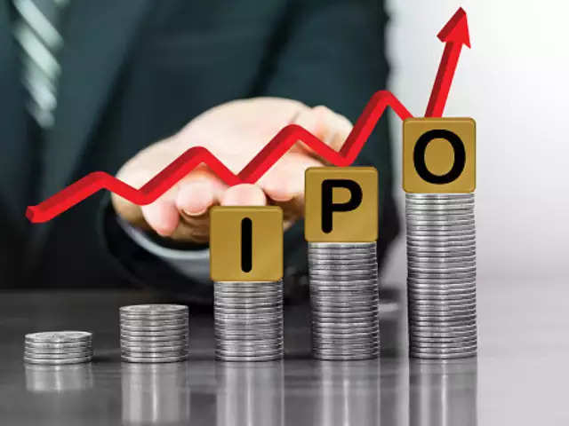 Delhivery eyes IPO in next 12-15 months; gets $25 mn investment from Steadview