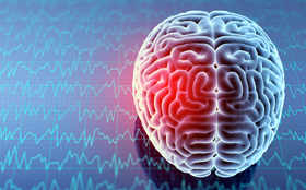 Brain connectivity can serve as biomarker for ADHD: Study