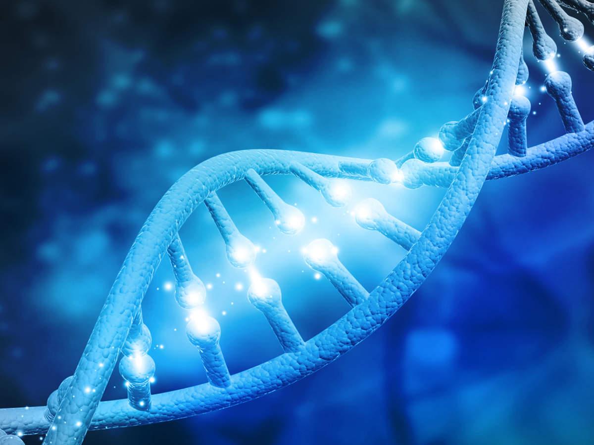 64 גנומים אנושיים מלאים ברצף ברזולוציה גבוהה