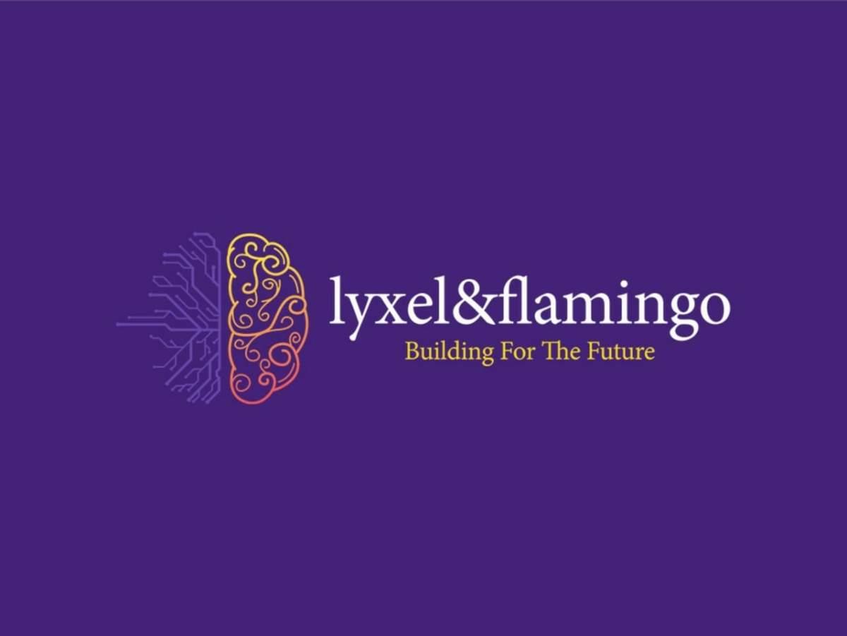 Lyxel & Flamingo remporte le mandat de médias sociaux pour le Code de McNROE