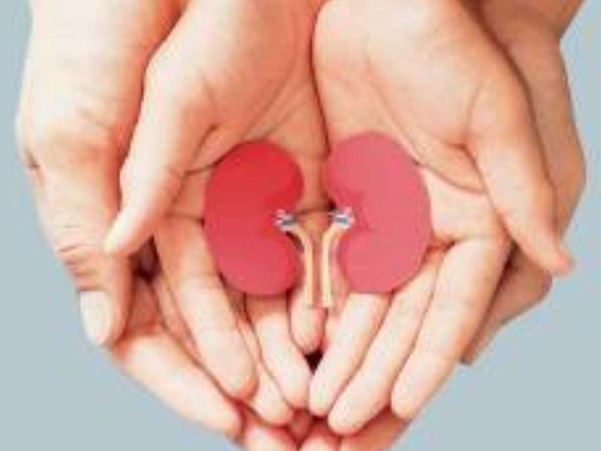 Newer drugs for hypertension offer hope to kidney patients on World Kidney Day