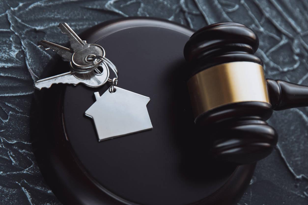 Telangana HC tells housing board to register Indu Aranya Pallavi flats in owners' names – ET RealEstate
