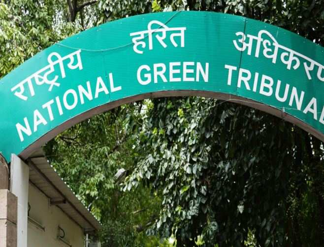 NGT forms panel to look into illegal construction by builder in Ghaziabad