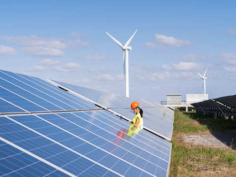 Renewable energy key part of India's growth programmes: Javadekar