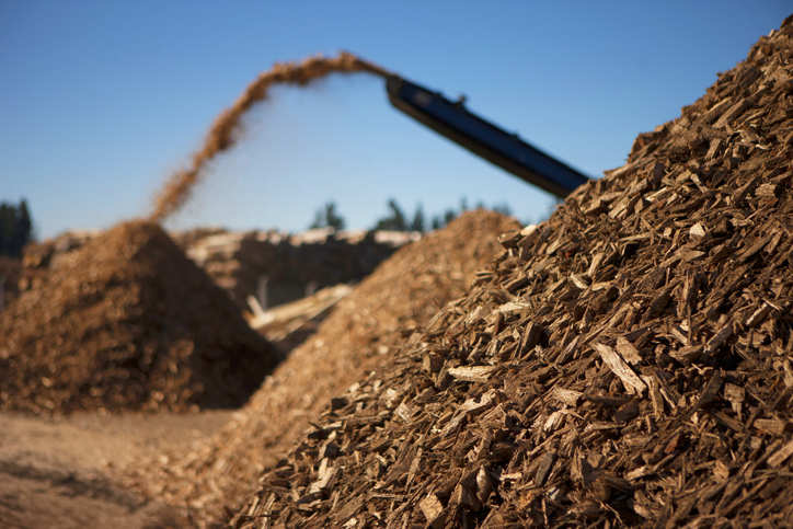 National Mission on use of biomass