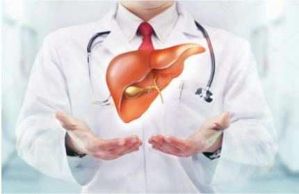 How excess sugar consumption causes fatty liver