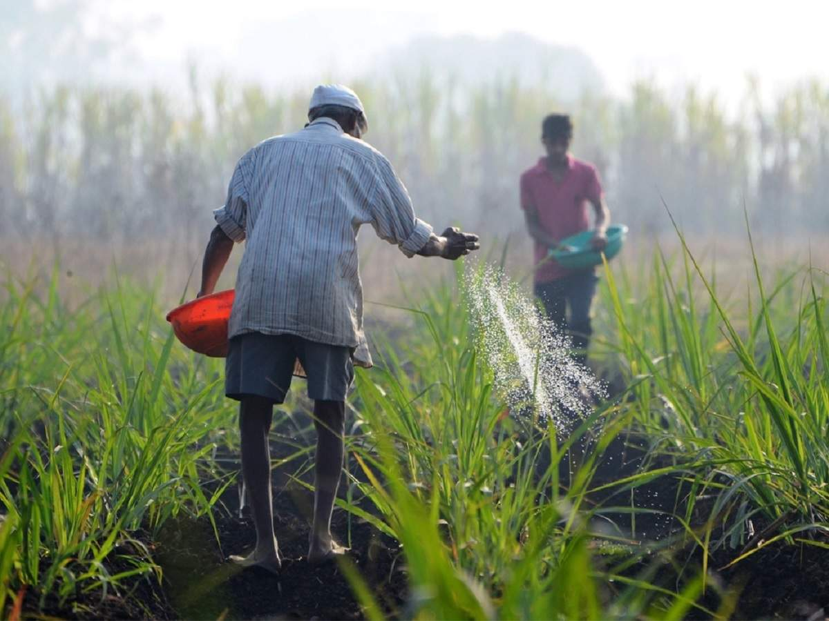 The monsoon's progress in the coming weeks holds the key to farm incomes and rural demand at a time when manufacturing and services sectors have suffered due to the coronavirus pandemic. Agriculture accounts for about 18% of India's economy.