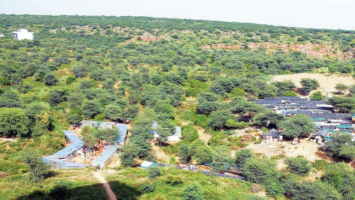 Not just protected land, all forest areas in Aravalis to be mapped – ET RealEstate