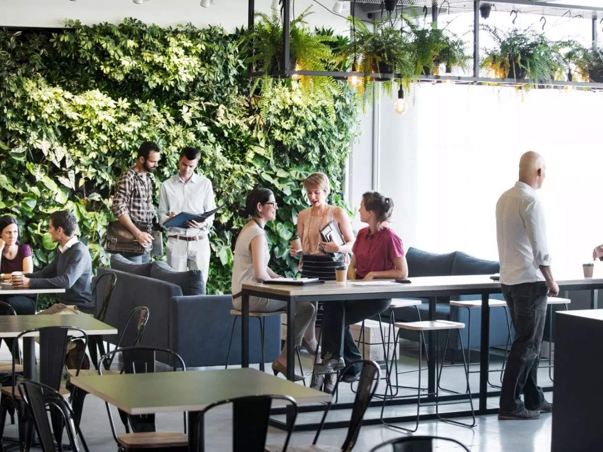 Companies try to lure workers back to desk with treehouses, garden plots