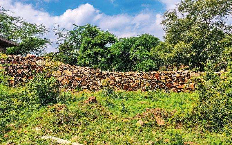 About 8,000 hectares of Aravalis in Faridabad not part of NCZ: Haryana government – ET RealEstate