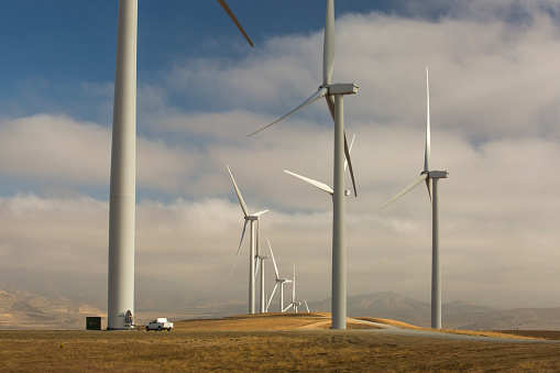 Adani Green commissions 50 Megawatt wind energy capacity in Gujarat