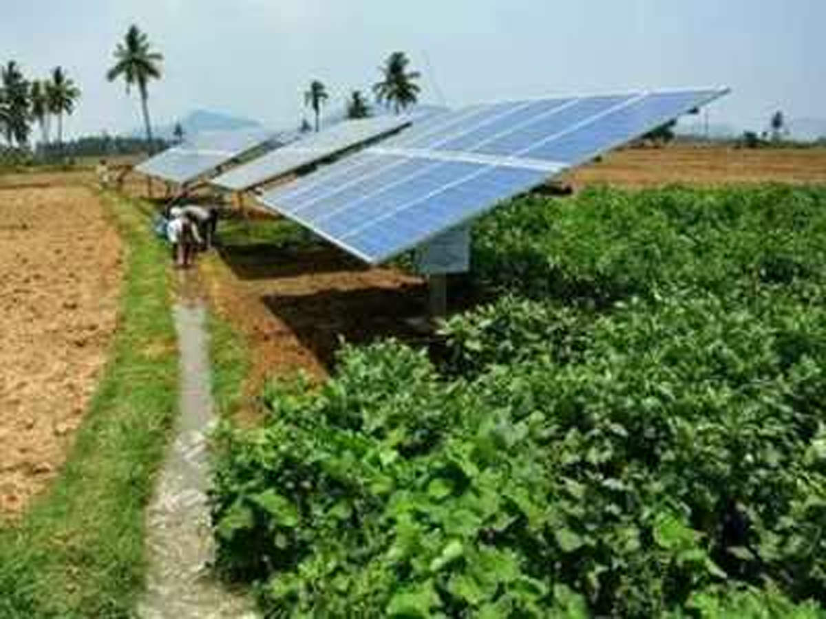 Madhya Pradesh sets up maximum solar pumps under government scheme: Minister