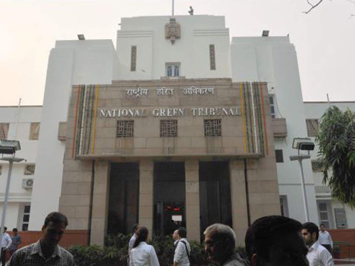 Rajasthan: Despite NGT order, laying of power lines on in GIB habitat
