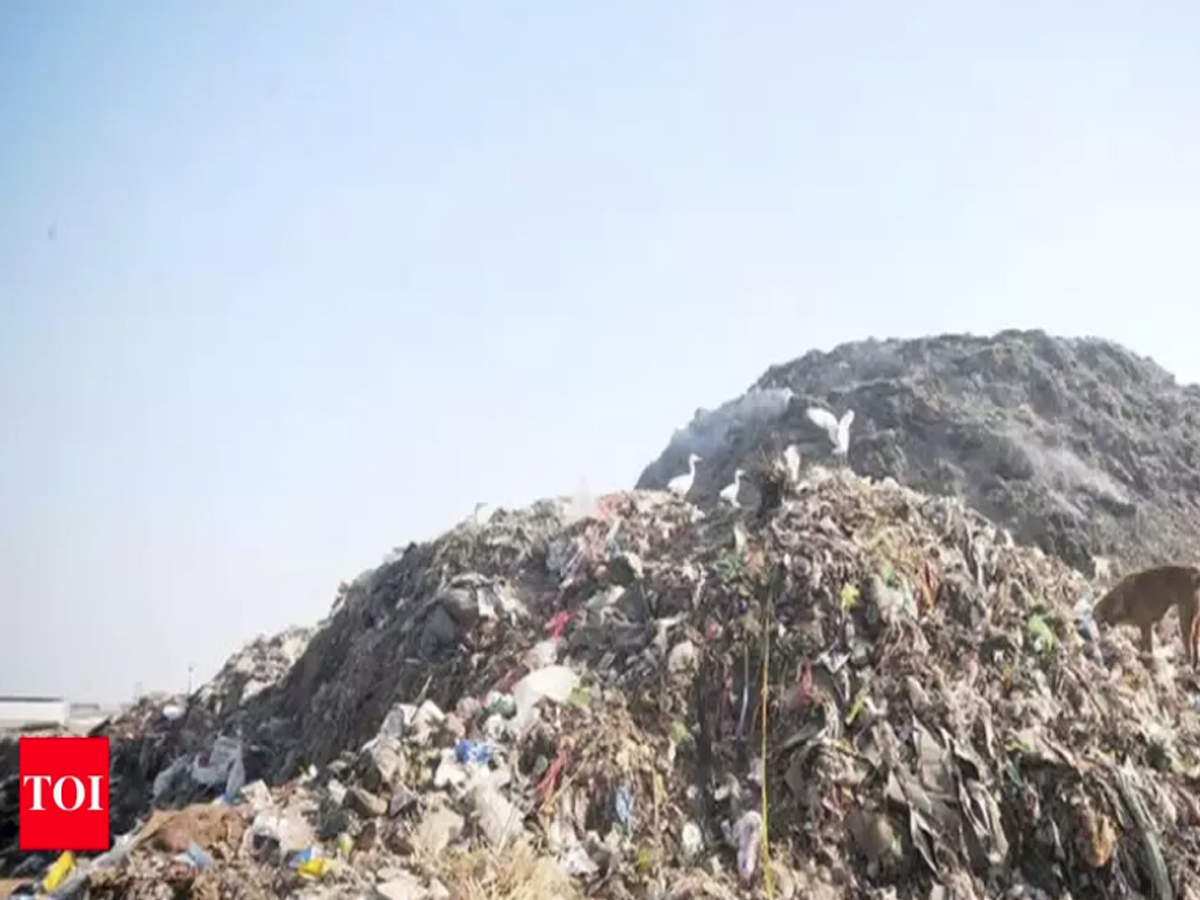 Waste-to-energy: Researcher develops bio-drying technology in Kochi