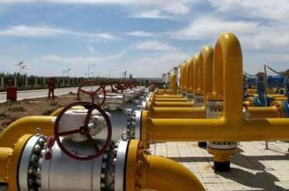 govt bans sale of gas cbm to self