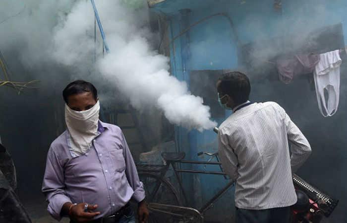 vector-borne diseases: Delhi HC to continue hearing dengue, chikungunya matter, Health News, ET HealthWorld