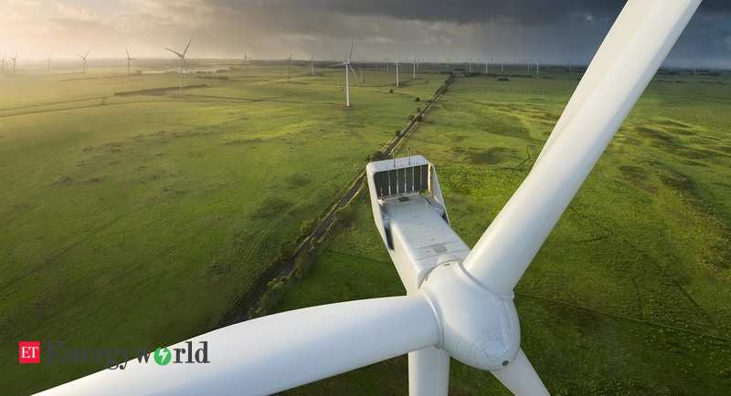 Wind farm 'predator' effect hits ecosystems: study by Indian Institute of Science - ETEnergyworld.com