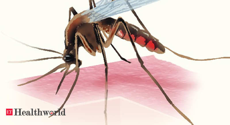 'मलेरिया उन्मूलन' पर पुनर्विचार करने का समय – ईटी हेल्थवर्ल्ड