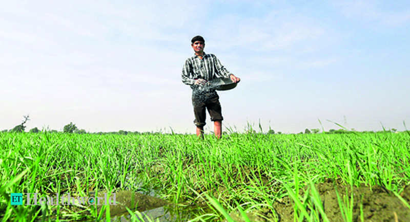 Rice with zinc, wheat with protein to fight malnutrition – ET HealthWorld